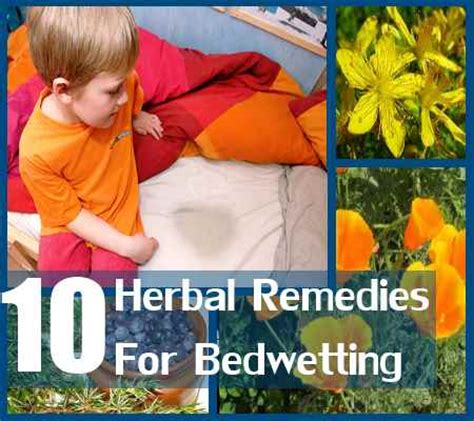 10 magical herbal remedies for bedwetting how to treat