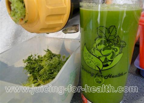 Cilantro Kidney Detox Recipe by Kidney Detox Juice