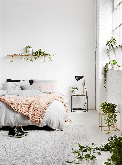 best plant for bedroom 25 best ideas about plants in bedroom on pinterest
