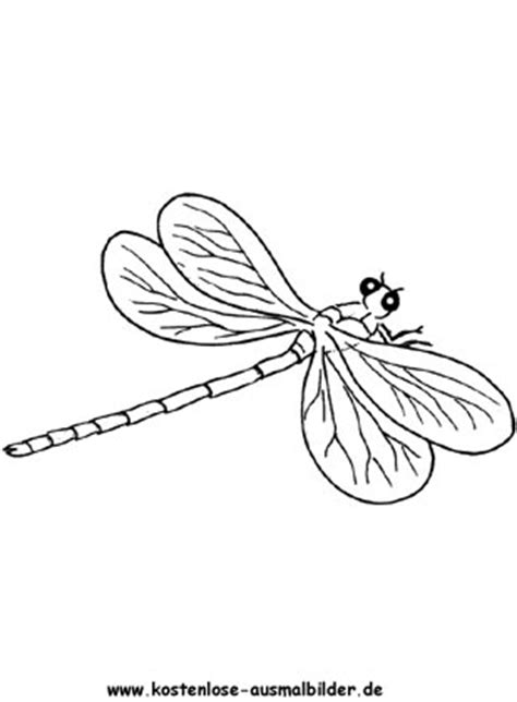 kostenlose ausmalbilder ausmalbild libelle