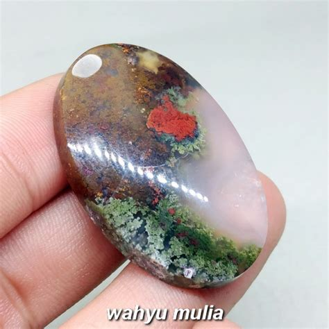 Batu Lumut Sawe Trenggalek batu lumut merah hijau sawe trenggalek asli kode 1037