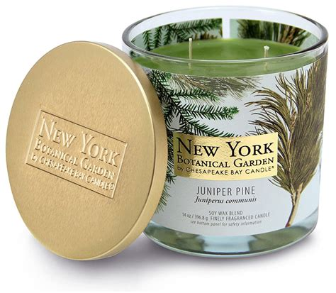 best candles 25 of the best candles for christmas candle junkies