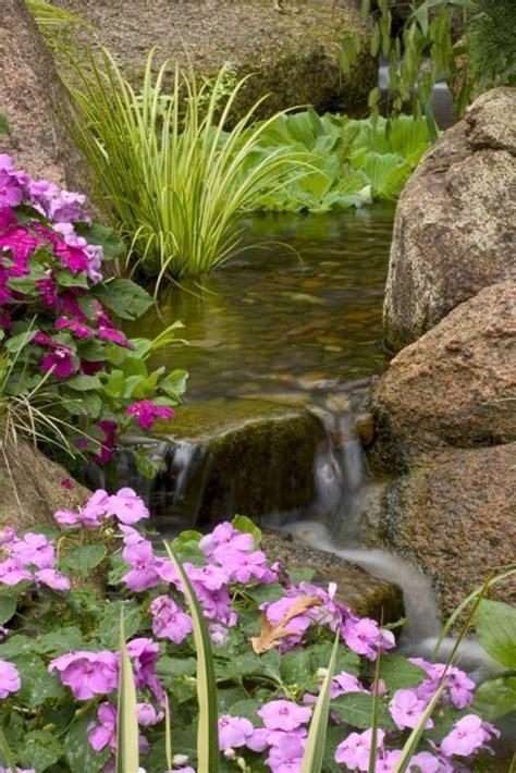 small plants  small ponds   garden magazine