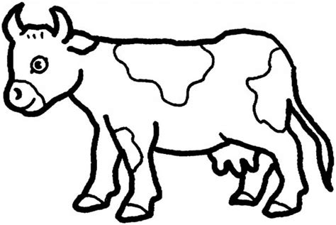 cow coloring pages cow coloring pages gianfreda net