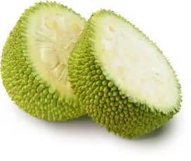 what is jackfruit anyway jackfruit faqs the jackfruit