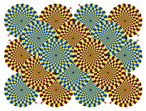 optical illusions the illusion images november 2004