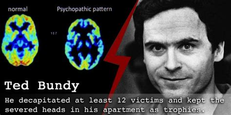 Ted Bundy Criminal Record Studies Reveal What Really Triggers Serial Killers To Murder