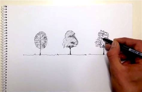 Landscape Architecture Drawing Techniques Top 10 Tutorials For Drawing Trees