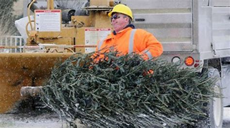 excess waste pick up and christmas tree collection in peel