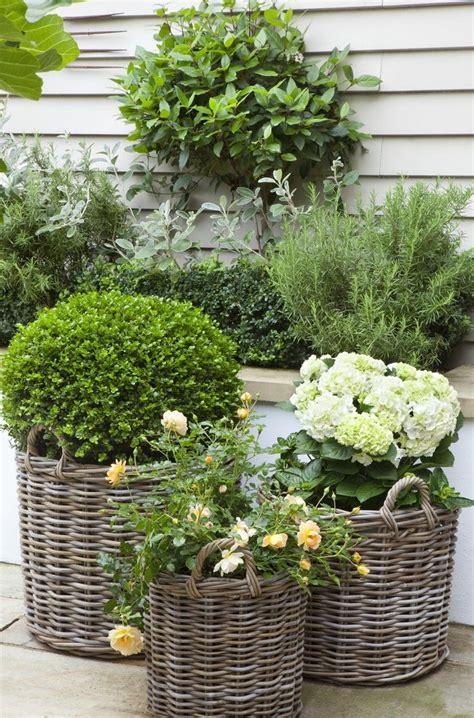 100 best garden and container pots images on