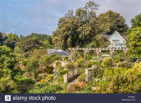Ventnor Botanical Gardens Botanic Gardens Of Ventnor At The Isle Of Wight South Stock Photo Royalty Free Image
