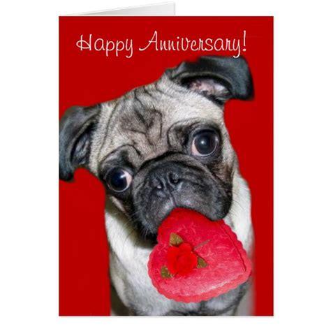 pug anniversary card happy anniversary pug greeting card zazzle