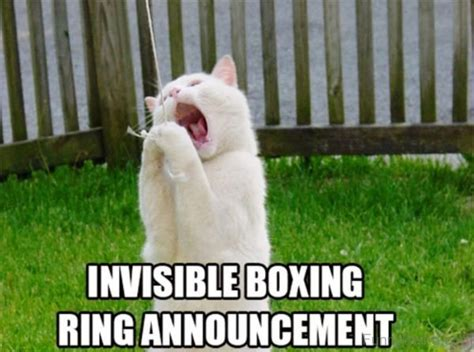 Very Funny Meme Pictures - boxing meme
