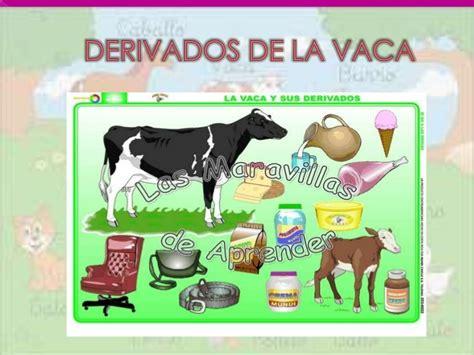 derivados de los animales derivados de la gallina animales de granja y sus derivados por alexandra farinango