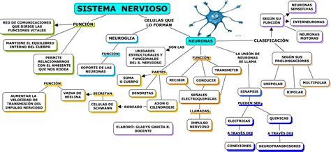 mapa conceptual del sistema nervioso iv mapa concep tual car interior design