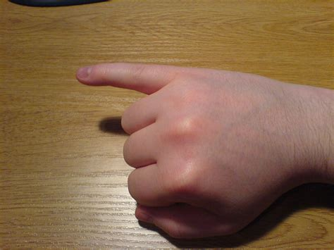 to finger file little finger of right hand extended jpg wikipedia