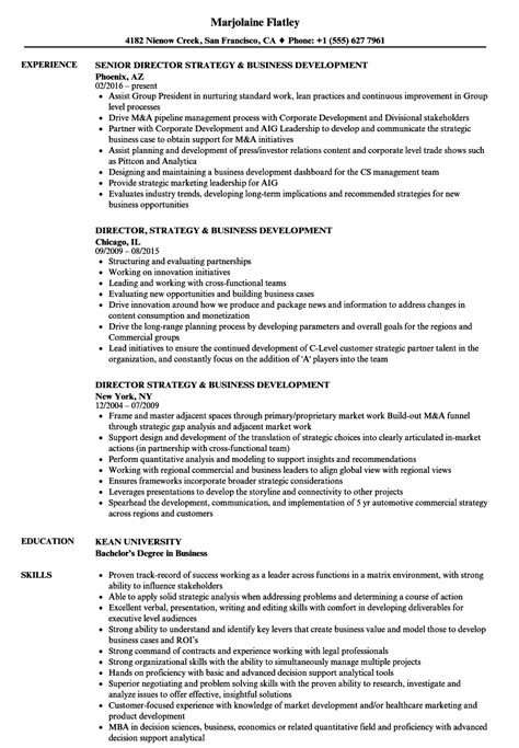 director strategy business development resume sles