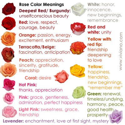 maroon color meaning burgundy color meaning 28 images what colors