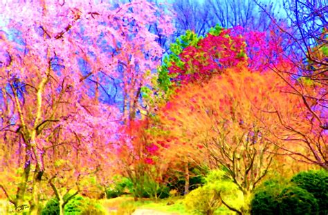 colorful trees paintings of artists original unusual art november 2011