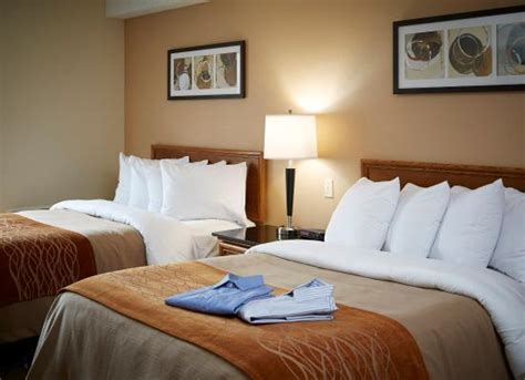 comfort inn bedding pillowtop beds with truly yours bedding picture of