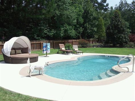 Backyard Leisure Pools Grand Baron Fiberglass Pool Large Backyard Leisure Pool And Spa
