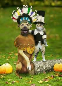 Funny Pictures About Thanksgiving Pics Photos Funny Pictures Kostenlos