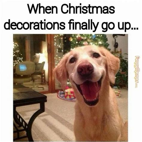 hilarious memes that sum up your christmas project inspired