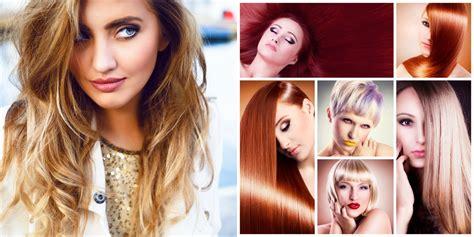 alimenti capelli salute e bellezza dei capelli gli alimenti utili