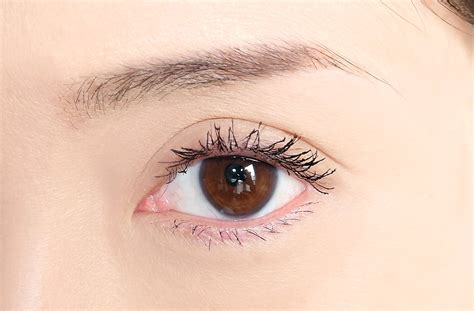Bourjois Yes To Volume No To Clumps Mascara Expert Review by Bourjois Volume Reveal Mascara Review And Swatches