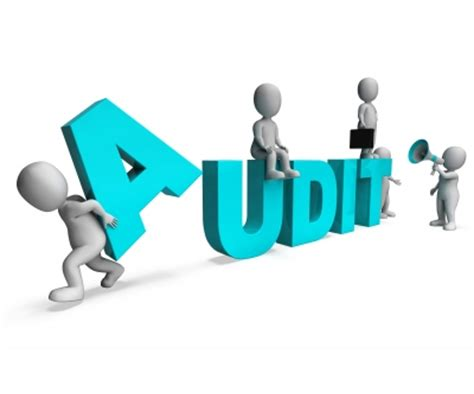 auditing interno audit process of an ongoing construction project
