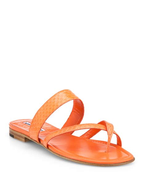 manolo blahnik sandals manolo blahnik susa snakeskin sandals in orange lyst