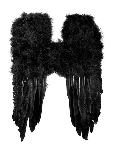 Small Feather Wings Black Small Black Feather