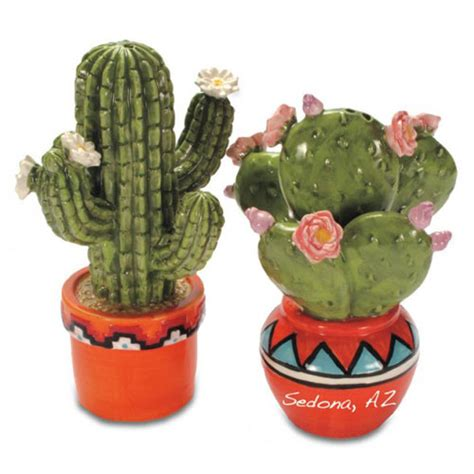 cactus pots blooming cactus in pots salt pepper shakers mexican dinner decorations
