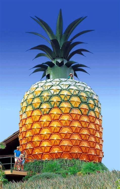 Pineapple House by The World S Catalog Of Ideas