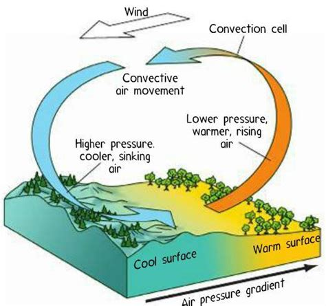 Convection Currents Produce The Heat In The Earth S Interior by Science Inc1 Gt None Gt Flashcards Gt Module 6 Earth