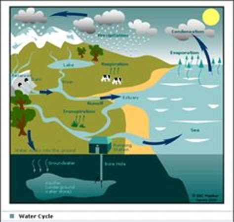 water cycle placemat science c2 w4 science super cute water cycle for kids free printable diagram placemat c2 w4