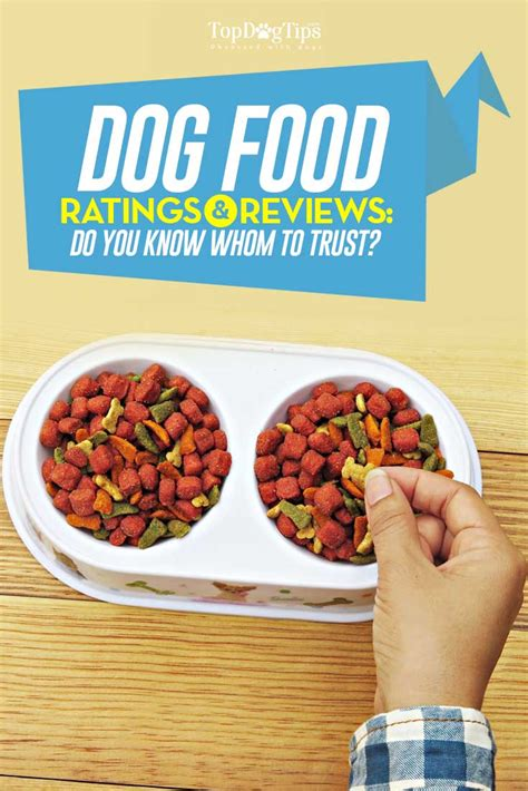 puppy food review best food review food