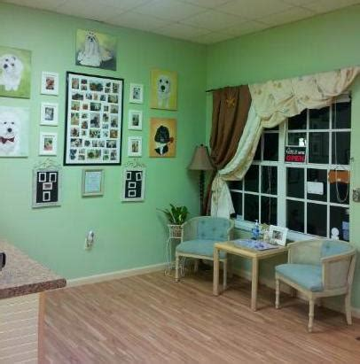 happy puppy pet spa venice fl doggie spa and grooming my town venice florida find groomer