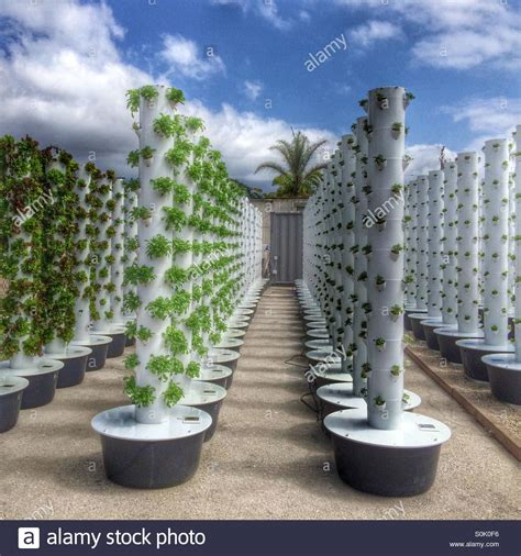 Vertical Aeroponic Garden Soil Free Aeroponic Vertical Planters Allow Dwellers