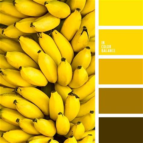 yellow color schemes 25 best ideas about yellow color palettes on