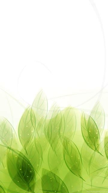 nice green leaves vector wallpaper green backgrounds