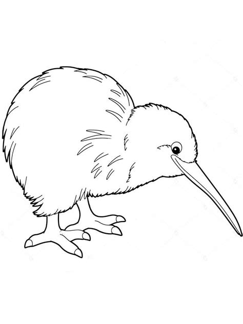 Coloring Page Kiwi Bird | kiwi coloring pages
