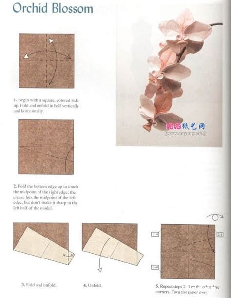 origami orchid tutorial other origami and orchids on pinterest