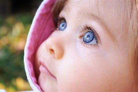 baby wallpaper blue eyes aleda costa cute babies with blue eyes