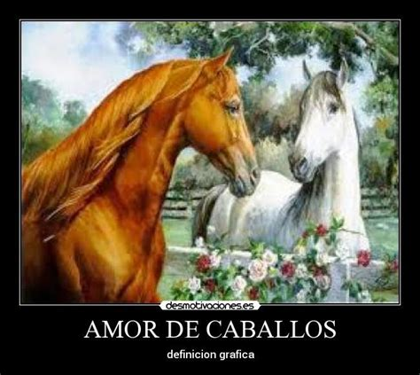 imagenes con frases de amor rancheras imagenes d caballos con frases d amor imagui