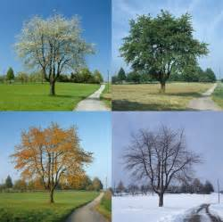 The seasons of your career development act as if it were impossible