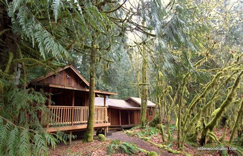 Secluded Cabin Rental by Secluded Cabin In The Woods Studio Design Gallery
