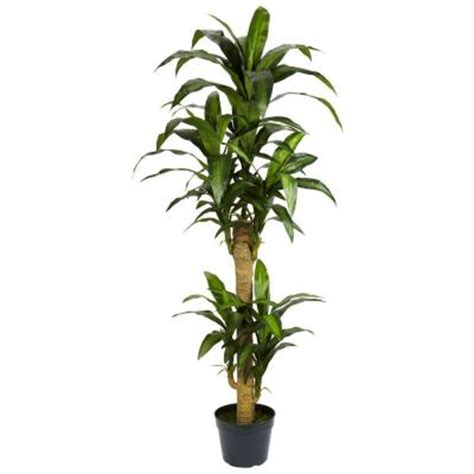 nearly 5 ft green yucca silk plant 6100 the home depot