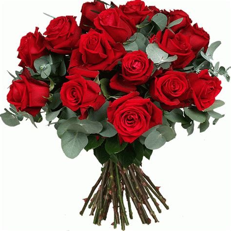 resultado de imagen para jardines de rosas rojas y azules jardines quot el tr 233 bol quot