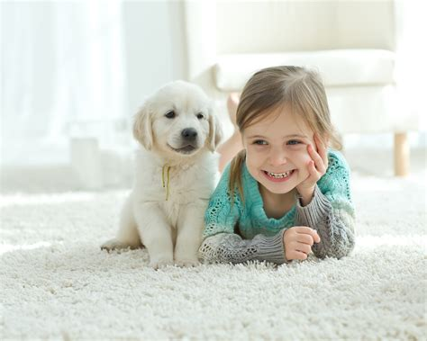 Money Surveys For Kids - 5 good reasons to buy pets for kids thrifty momma ramblings
